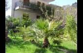 3152123, Apartment to rent Aidipsos, Ilia, € 150, 25 m2